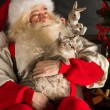 Santa Claus sitting near Christmas tree and embracing his cat — Stock Photo