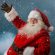 Stock Photo: SantClaus welcoming to North Pole