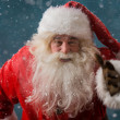 Stock Photo: Santa Claus running outdoors at North Pole