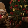 Christmas living room — Stock Photo #33876093