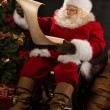 Portrait of happy Santa Claus — Stock Photo #33876779
