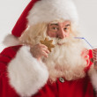 Portrait of Santa Claus — Stock Photo #34274483
