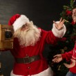 Santa Claus — Stock Photo #35616847