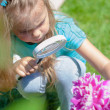 Stock Photo: Little girl exploring the flower through the magnifying glass outdoors