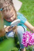 Little girl exploring the flower through the magnifying glass outdoors — Stock Photo