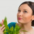 Woman holding lucky bamboo plant — Stock Photo