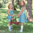 Two little girls carrying basket with organic food — Stock Photo