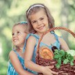 Two little girls holding basket of organic food — Stock Photo #46534951