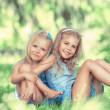 Two little cute girls on lawn in the park — Stock Photo #46534973