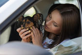 Woman and dog in car — Stock Photo