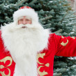 Portrait of Santa Claus standing with open hands outdoors at chr — Stock Photo #7558963