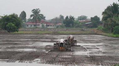 Plowing paddy field 2 — Stock Video