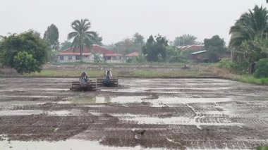 Plowing paddy field 1 — Stock Video