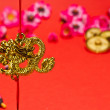 Chinese New Year Dragon — Stock Photo #8395802
