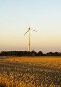 Electric wind turbines on sunset background — Stock Photo