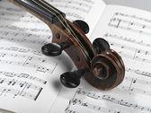 Violin head — Stock Photo