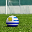 Soccer Ball with Uruguay Flag on the grass in stadium — Stock Photo #45329457