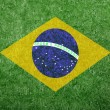 Flag of Brazil as a painting on green grass — Stock Photo