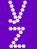 Illustration of flowers letter y,z — Stock Vector