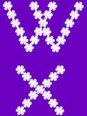 Illustration of flowers letter w,x — Stock Vector