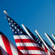 usa american flags in a row — Stock Photo
