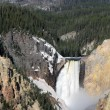 Yellowstone National Park - lower falls — Stock Photo #25120957