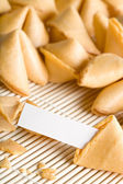 Fortune cookie your text — Stock Photo