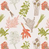 Herbs background — Stock Vector