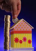 экономия для дома — Стоковое фото