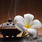Aromatheraphy — Stock Photo #29786015