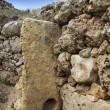 Malta Island, Gozo, the ruins of Ggantija Temples (3600-3000 BC), the megalithic complex was erected in three stages by the community of farmers and herders inhabiti - Foto de Stock  