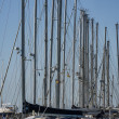 Italy, Sicily, Mediterranean sea, Marina di Ragusa, sailboat masts in the marina — Stock Photo