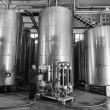 Italy, Sicily, Ragusa province, countryside, stainless steel wine containers in a wine factory - Foto Stock