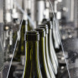 Italy, Sicily, wine bottles ready to be washed and filled with wine by an industrial machine in a wine factory - ストック写真