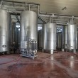 Italy, Sicily, Ragusa province, countryside, stainless steel wine containers in a wine factory - Photo