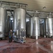 Italy, Sicily, Ragusa province, countryside, stainless steel wine containers in a wine factory - 图库照片