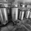Italy, Sicily, Ragusa province, countryside, stainless steel wine containers in a wine factory - Zdjęcie stockowe