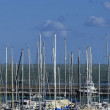 Stock Photo: Italy, Siciliy, Mediterranesea, Marindi Ragusa, view of sailing boat masts in port
