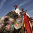 India, Rajasthan, Jaipur, decorated asian elephant carrying a tourist at the Amber Fort — Stock Photo