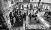 ινδία, rajasthan, τζαϊπούρ, ινδική σε ινδουιστικό ναό — 图库照片