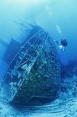 Sudan, röda havet, vrak dykning — Stockfoto