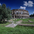 View of the Roman Colosseum — Stock Photo
