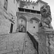 Italy, Tuscany, Pitigliano, Orsini Palace entrance, stone lion — Stock Photo