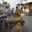 Sugar cane juice street seller — Stock Photo