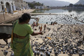 An indian woman is feeding the pigeons on the steps to the sacred lake — Stock Photo