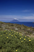 Stromboli island in the background — Stock Photo