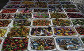Various magnets for sale in a local market — Стоковое фото