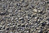 Река камни крупным планом — Стоковое фото