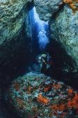 Cave diving, scuba diver — Stockfoto