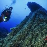 Scuba diver and starfish — Stock Photo